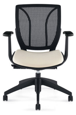 Roma Ergonomic Chair