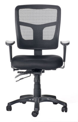 Friant Midzone High Performance Task Chair