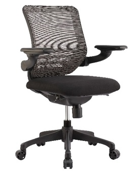 Quickship Mesh Desk Chair
