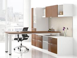 Friant Office Modern Executive Desks