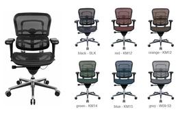 Ergohuman Mesh Mid Back Desk Chair Eurotech