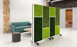 Biophilic Office Dividers & Office Partitions