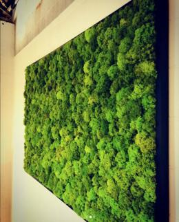Acoustical Solutions Moss Wall Panels