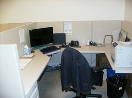 Steelcase Enhanced 5x5 or 7.5x7 cubicles